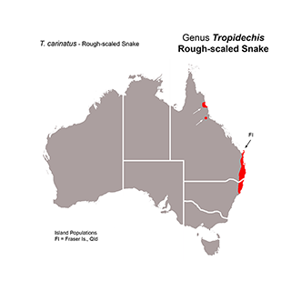 Distribution map of Rough-scaled Snakes