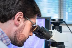 A researcher using an optical microscope