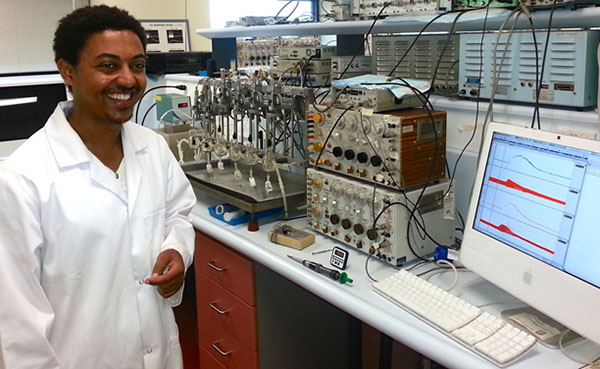 Mr Ashenafi Betrie, PhD candidate, studies right and left atria from aged mice with neurodegenerative diseases