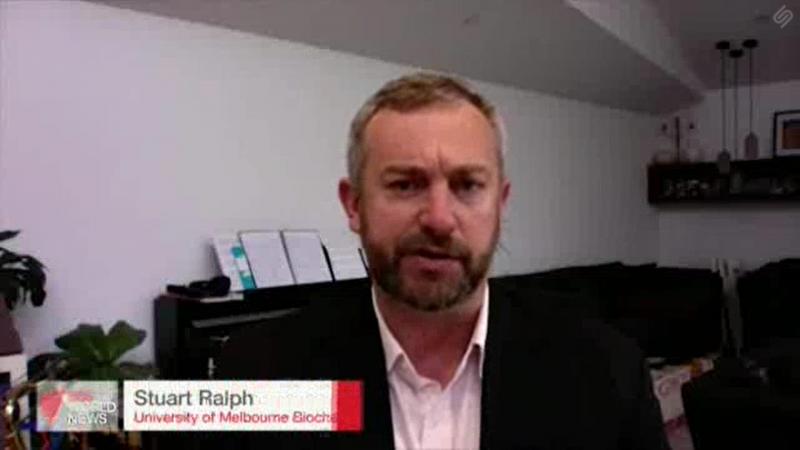 Screenshot of Associate Professor Stuart Ralph speaking on SBS World News