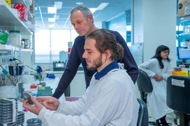 photo of PhD student Andrew Brown and Professor Ian van Driel in laboratory
