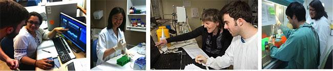 montage showing Delbridge lab personnel