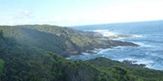 Stephens tasmanian hike