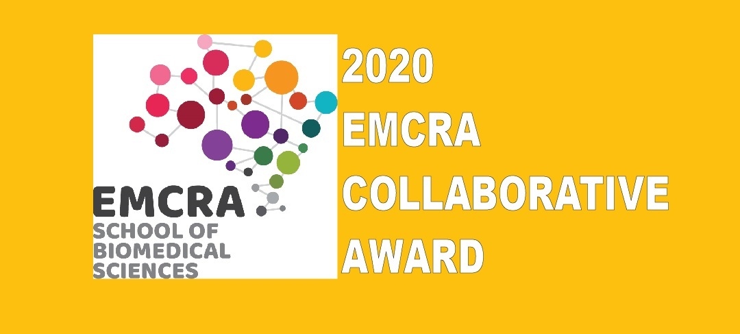 """Graphic featuring the EMCRA logo and the words """"2020 EMCRA Collaborative Award"""""""